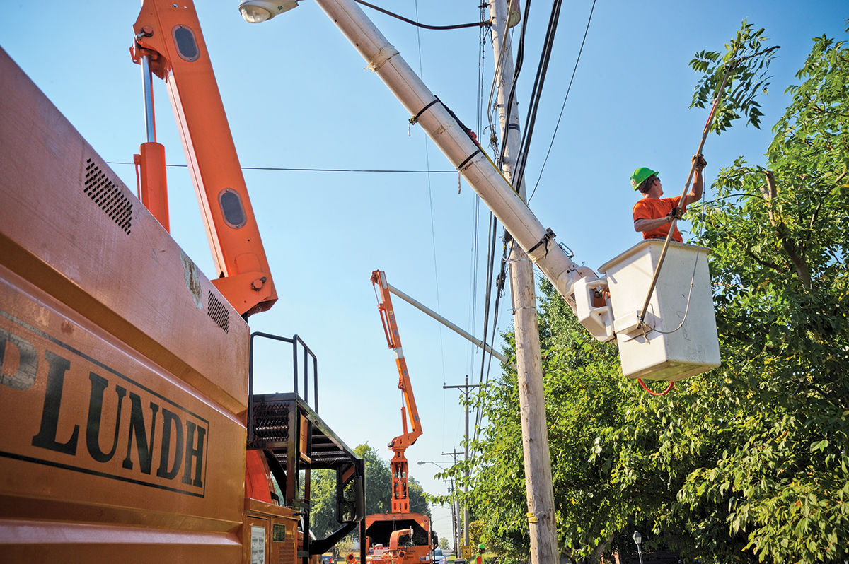 electric-utilities-must-trim-trees