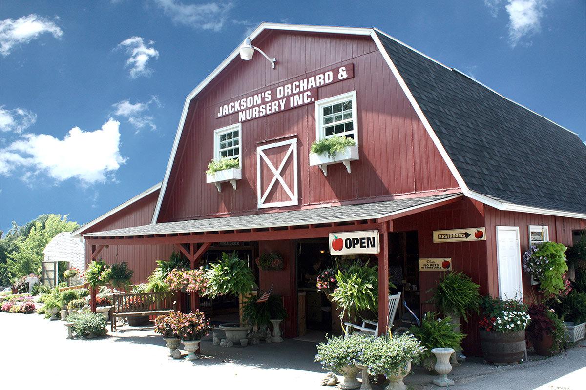 Jacksons-Orchard-Barn