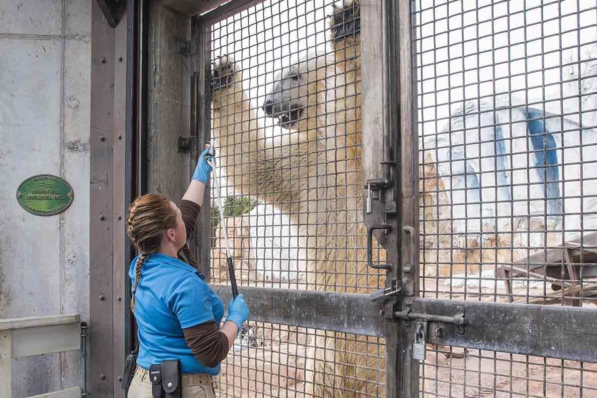 Zoo keeper Stephanie Green