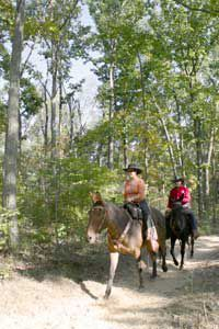In the back country of Mammoth Cave National Park, horse trails wind through rugged terrain. Photo: National Park Service