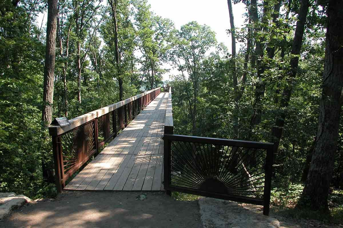 Bernheim Canopy Tree Walk