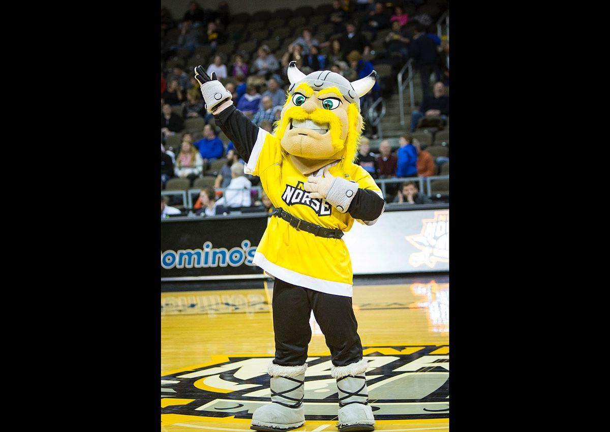 northern-kentucky-university-norse-mascot-1