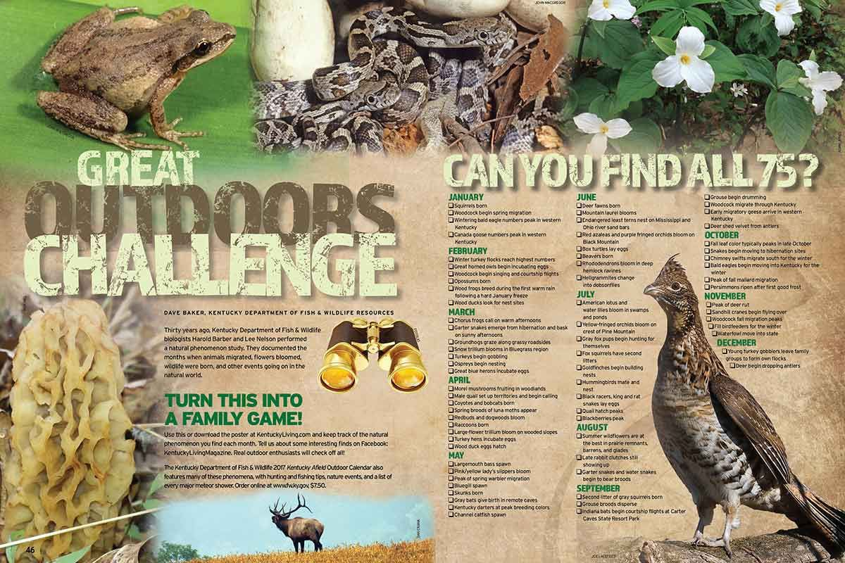 Great Outdoors Challenge