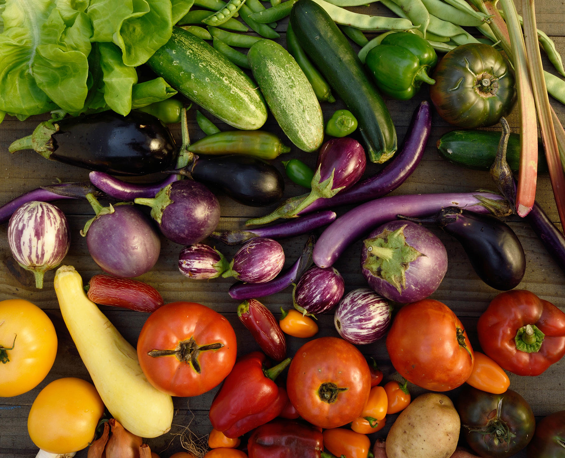 Top 10 Veggies - Kentucky Living