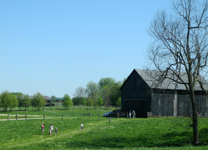 Regenerative Farming Tour: The Spring Awakening of Elmwood Stock Farm