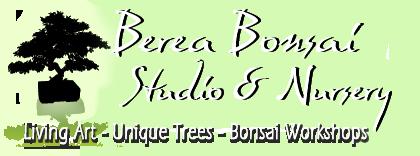 Joseph Beth presents Basic Bonsai Information Night with Berea Bonsai Studio & Nursery