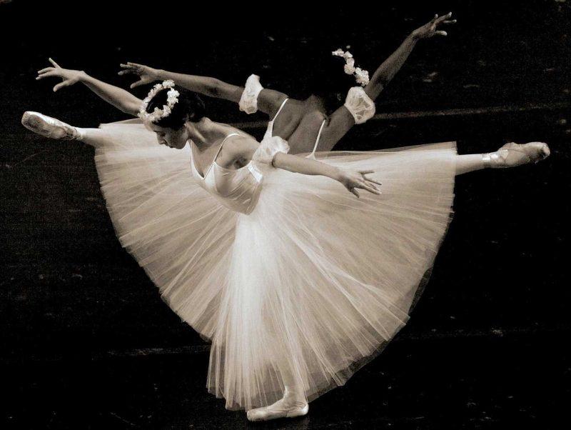Joseph Beth presents Snow White storytime featuring The Lexington Ballet