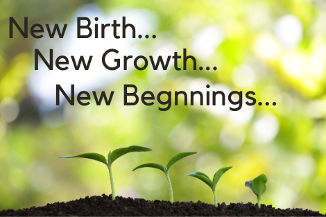 New Birth…New Growth…New Beginnings