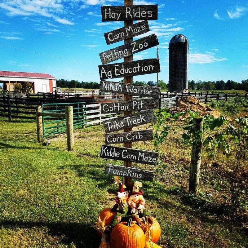 Buckmeadow Farm Fest, Sept. 25-Oct. 30
